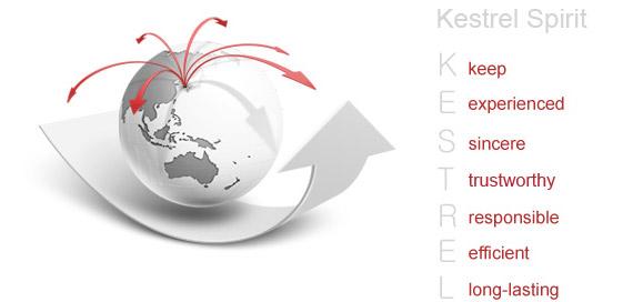 Nanjing Kestrel Toy Manufacture Co.,Ltd.